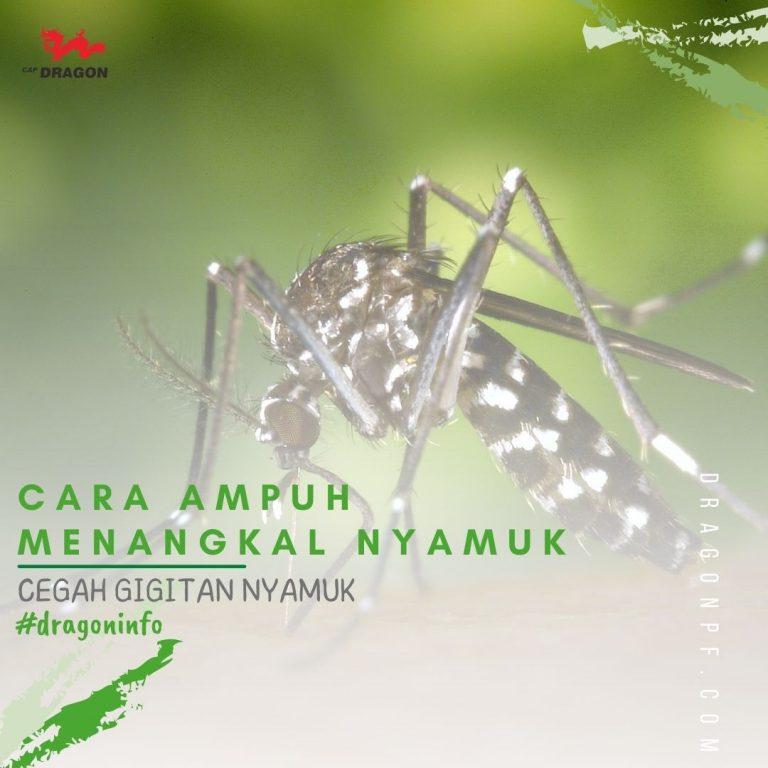 Ampuh Cegah Gigitan Nyamuk